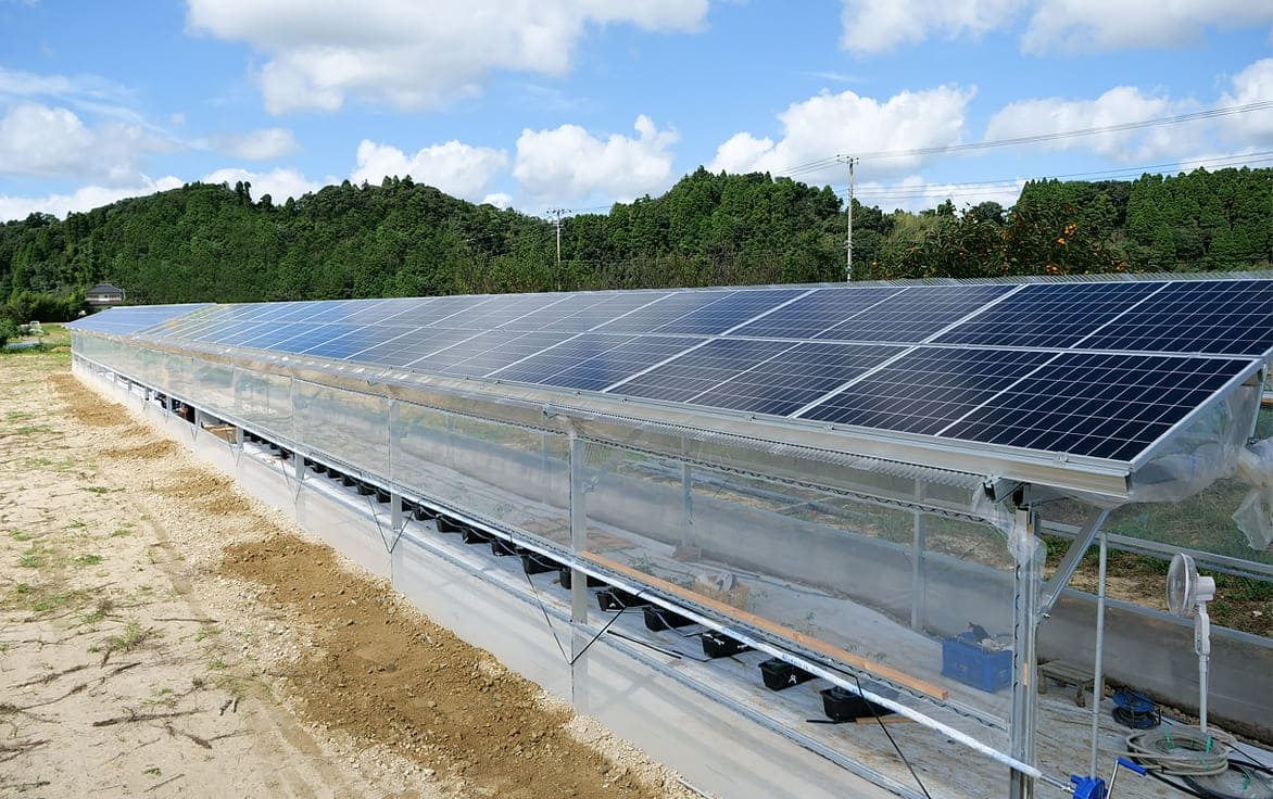 次世代農業ソーラーハウス