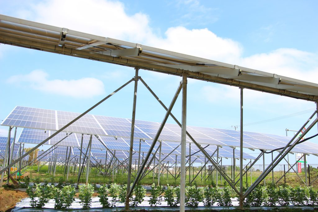 農地の上に作る太陽光発電。ソーラーシェアリングとは?