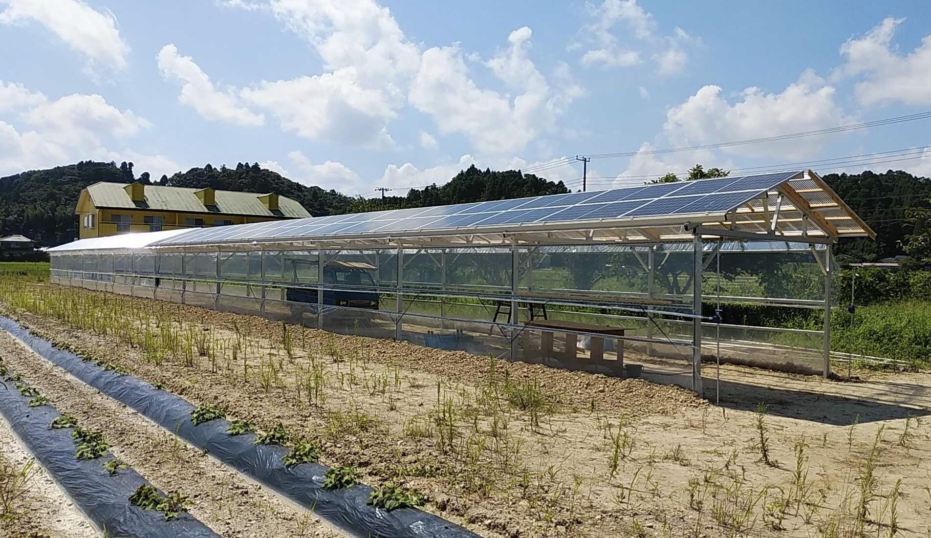 """【日刊電波新聞】""""次世代農業用ソーラーハウス""""を取り上げていただきました"""